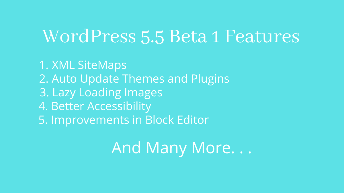 WordPress 5.5 Beta 1 features